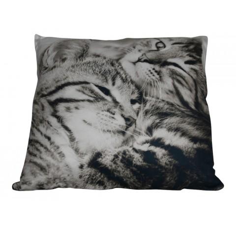 Coussin 2 Chats Tigrés