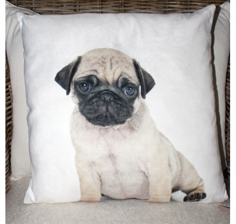 Coussin Chien Chiot Carlin 45X45