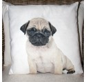 Coussin Chien Chiot Carlin 45 x 45 cm